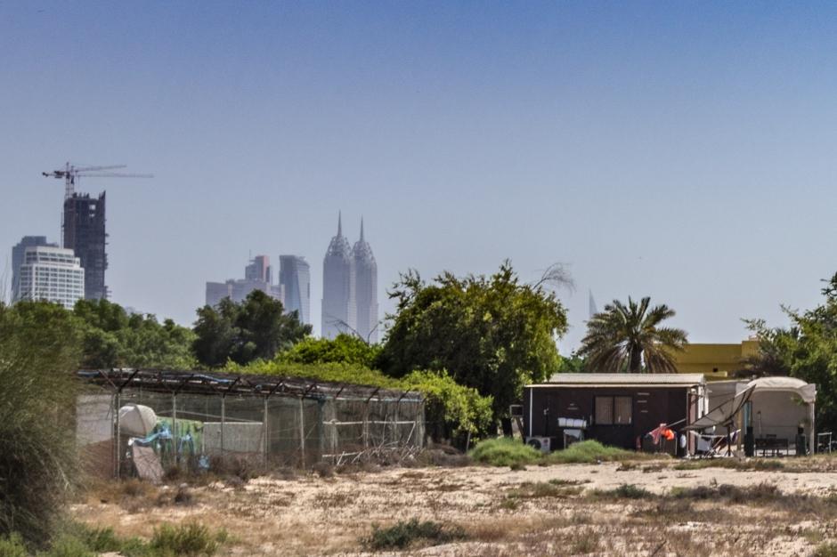 Urban farm, Dubao